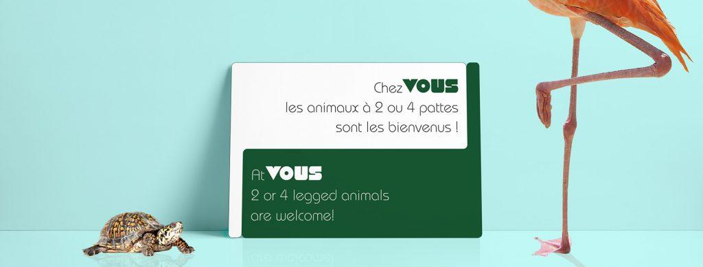 Création identité visuelle VOUS, Mitaki-Design, graphiste Avignon